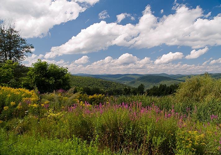 Image Biechele Hills of Western Mass