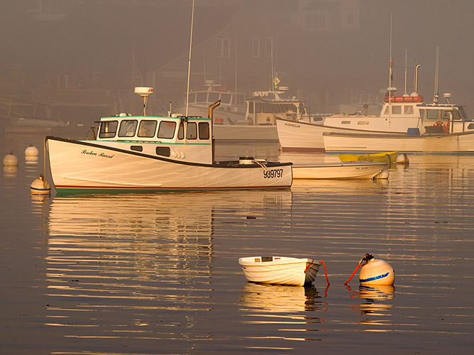 Image Biechele Misty Morning in Harbor