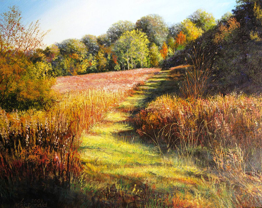 Image MacDonald Path Through the Meadow