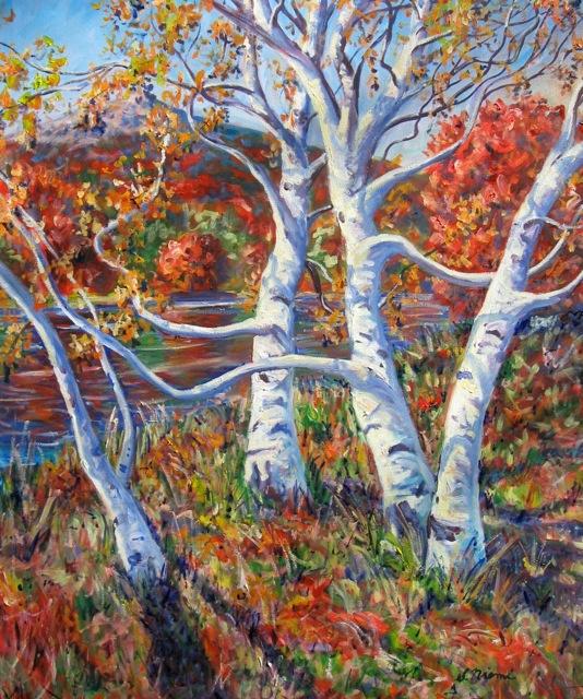 Image Niemi Monadnock Birches